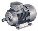 Elektromotor 1LE1