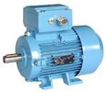 Elektromotor 1MA7