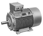 Elektromotor 1MJ6